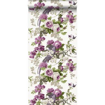 wallpaper birds of paradise purple