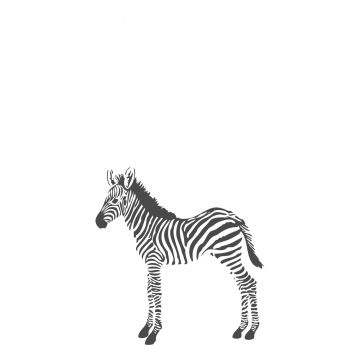 wall mural zebras black and white